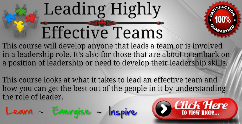Leading Teams Training